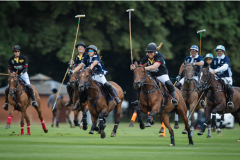 polo players in action on the field